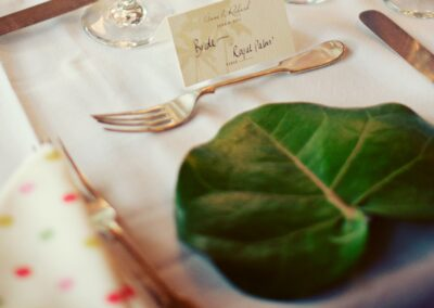 Sea grape leaf on a table